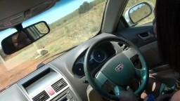 Ebony couple fucking in Car